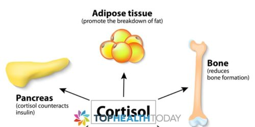 Cortisol: How it Affects your Health