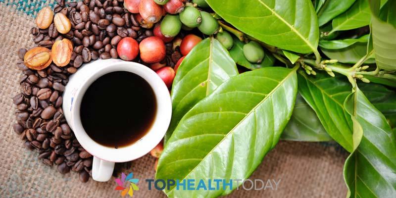 Is Caffeine a Drug?