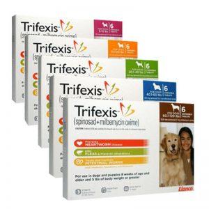 trifexis flea pill